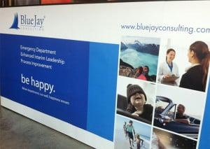 BlueJay-Backwall