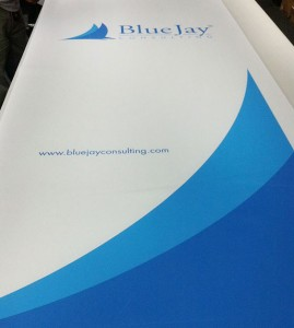 BlueJay-banner-cut